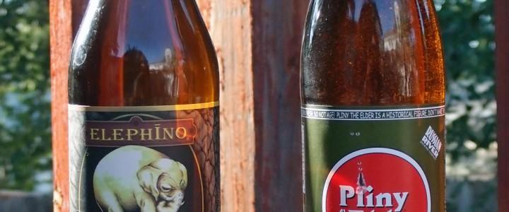 Pliny the Elder vs Elephino