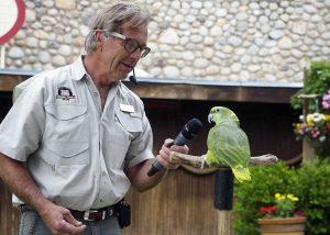 Bird Show Hogle Zoo - Copyright Crafty Beer Girls