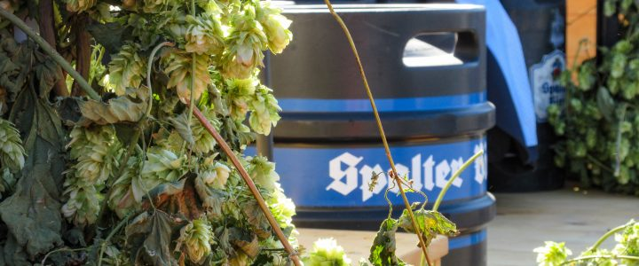 Spalter Bier – The Only Beer In The World!