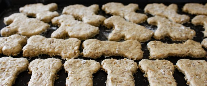 Spent Grain Dog Treats