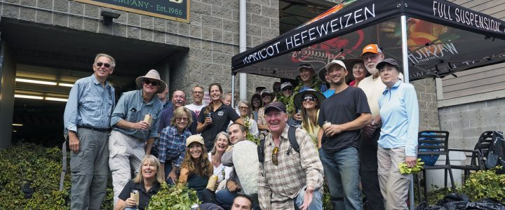 From Bine to Stein: Park City's Hops Hunters Harvest